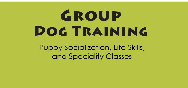 Free puppy training guelph