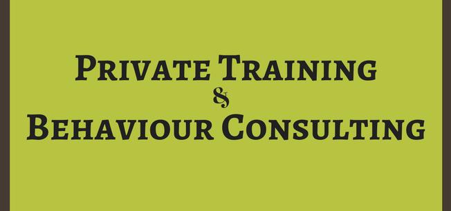 Behaviour Consultation and Private Training